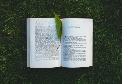 Romanlardaki Sigortacılar 3
